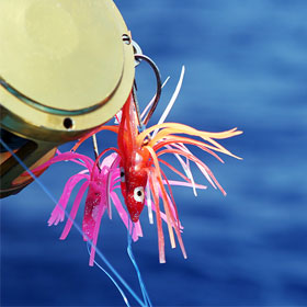 Pro Tips on Saltwater Deep Sea Fishing Lures