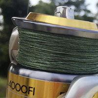 Popular Fishing Line Types & Setup