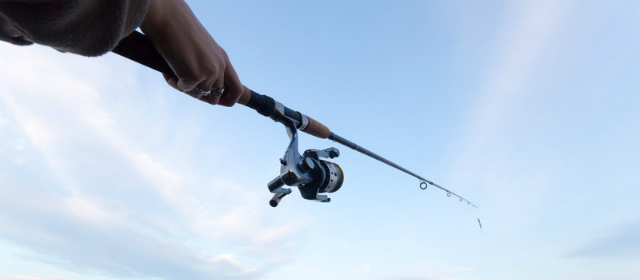Take me fishing get your fishing license the easy way for Renew florida fishing license