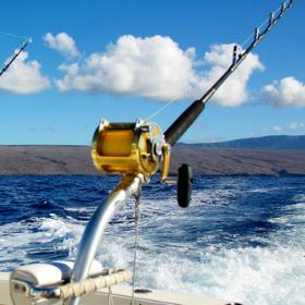 saltwater fishing tackle & knots - take me fishing, Reel Combo