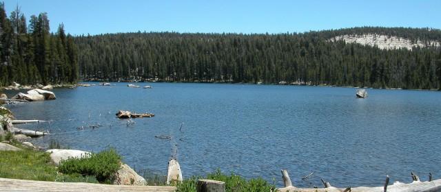 Best Fishing Lakes In California