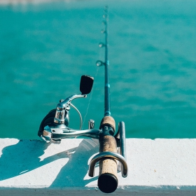 San Diego Fishing Trips: Where to Fish By Land or Sea