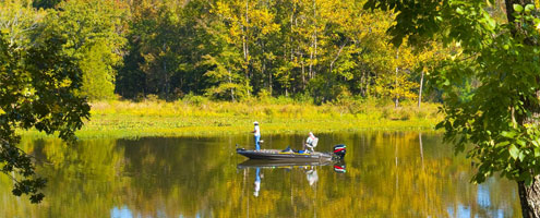 Guide for oklahoma fishing and boating for Places to buy fish near me
